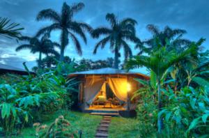 Pura Vida Spa Tent on Costa Rica Yoga Retreat wooded area of property