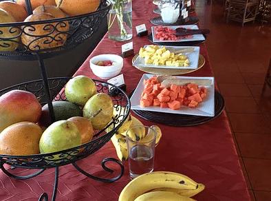 Healthy Pura Vida Food